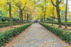 Footpath By Statues At Ming Xiaoling Mausoleum in China Royalty Free Stock Image