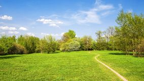 Footpath in the summer park Royalty Free Stock Image
