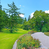 Footpath in summer park Royalty Free Stock Photos