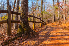 Footpath and thicket in Providence Canyon State Park, Georgia, USA. The footpath with fence, tree trunk and thicket in the Providence Canyon State Park in sunny Stock Image