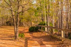 Footpath and thicket in Providence Canyon State Park, Georgia, USA Royalty Free Stock Images