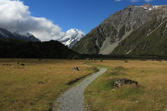 Footpath to Valley in Mount Cook National Park Stock Image