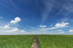 Footpath to horizon Royalty Free Stock Images