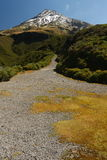 Footpath to Mount Taranaki Stock Photo