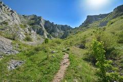 Footpath to the Piatra secuiului peak near Rimetea village. Stock Photos