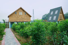 Footpath to wooden European-style cabins in orchard Stock Image