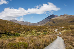 Footpath in Tongariro National Park Royalty Free Stock Photo