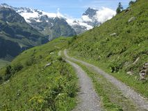 Footpath towards the snow capped mountains near Engelberg, Switzerland Stock Photos