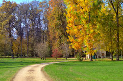 Footpath and trees with autumnal foliage in Italy. Royalty Free Stock Photos