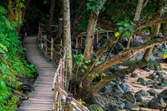 A footpath in tropical places of Thailand Royalty Free Stock Photo