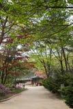 Footpath and verdant trees at the Jongmyo Shrine in Seoul Stock Photo