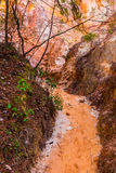 Footpath between walls of Providence Canyon, USA Royalty Free Stock Photography