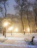 Footpath in winter city park Royalty Free Stock Photography