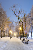 Footpath in a winter city park Royalty Free Stock Photo
