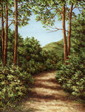 Footpath in wood Stock Image
