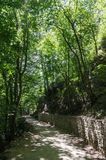 Footpath on a wooded mountainside. Russia, Republic of Crimea. 06/13/2018: The trail to the Uchan-Su waterfall. Mount Ai-Petri stock images