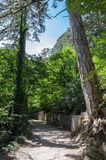 Footpath on a wooded mountainside. Russia, Republic of Crimea. 06/13/2018: The trail to the Uchan-Su waterfall. Mount Ai-Petri royalty free stock photos