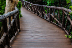 Footpath in the zoo. Bangkok thailand Royalty Free Stock Photography