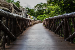 Footpath in the zoo Royalty Free Stock Images