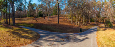Footpaths and hills in Lullwater Park, Atlanta, USA. Panoramic view of the footpaths, hills and bare trees in the Lullwater Park, Atlanta, USA Royalty Free Stock Images
