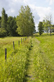 Footpaths on a meadow Stock Photo