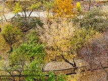 Footpaths in public garden in autumn Stock Image