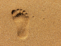 Footprint. A footprint in the sand Royalty Free Stock Photo
