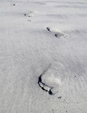 Footprint Royalty Free Stock Images