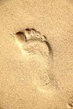 Footprint Stock Photos