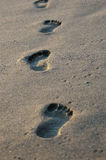Footprint. Close up on footprints on a  golden beach Royalty Free Stock Photography