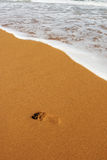 Footprint. A footprint on a beach Royalty Free Stock Photos