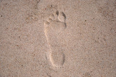 Footprint. Left on sand on a beach royalty free stock image