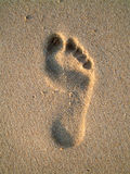 Footprint Stock Image