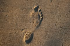 Footprint. Human footprint in the sand on the beach Royalty Free Stock Image