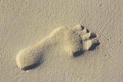 Footprint. One footprint on the sandy coral beach Stock Photos