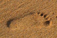 Footprint. Print in the sand on the beach stock images
