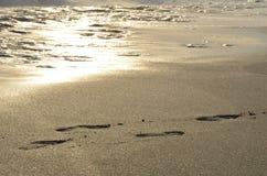 footprint Zdjęcie Royalty Free