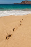 footprint Zdjęcie Stock