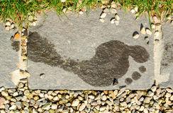 Footprint. Wet Human Footprint On The Stone Stock Image