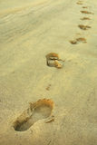Footprint. An image of footprint in the sand of the beach royalty free stock images