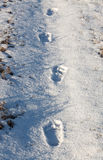 Footprint of bare feet in the snow. Trace an athlete engaged i Stock Image
