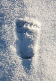 Footprint of bare feet in the snow. Trace an athlete engaged i Stock Images