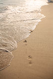 Footprint on beach Stock Images
