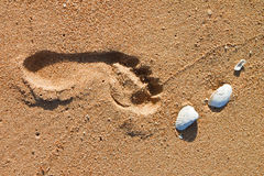 Footprint in the beach Royalty Free Stock Photos