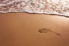 Footprint on the beach royalty free stock photo