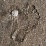 Footprint on a beach Royalty Free Stock Photography