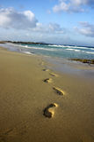 Footprint on the beach. Starting from the ocean Stock Photo