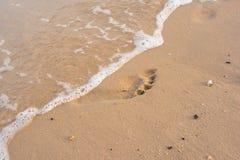 Footprint on beach. Footprint on beatiful sand beach Royalty Free Stock Photo