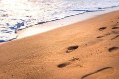 Footprint on beach royalty free stock photography