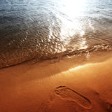 Footprint on beach Stock Photography
